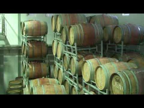Franschhoek Wine Farms & Tasting - Cape Winelands, South Africa