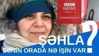 """""""Azərbaycandan beyin axını tam həqiqətdir"""" - Kanadada yaşayan Şəhla"""