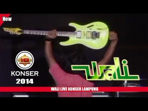 MANTAPP !!! 'WALI' BISA BIKIN GOYANG PENONTON (LIVE KONSER LAMPUNG TENGAH 2014)