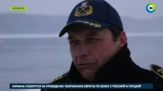 Сибирские холода в Европе сковали Дунай   МИР24