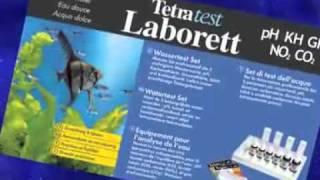 Tetra como montar un acuario - español