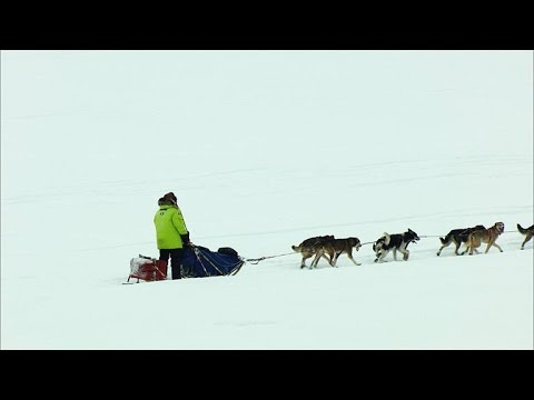 How a Diphtheria Outbreak Spawned the Iditarod