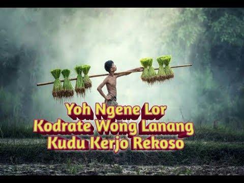 Kata Kata Bijak Story Wa Bahasa Jawa.
