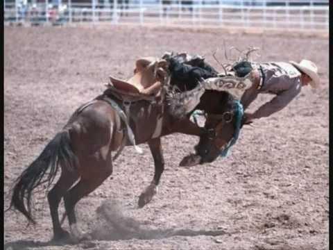 photo cheval fougueux