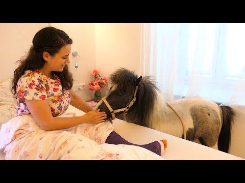 Mein Pony am Krankenbett! Überraschung von meinem Freund
