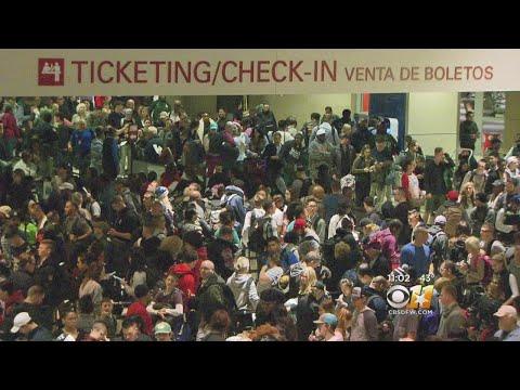 Things Back To Normal At Love Field Airport After Evacuation