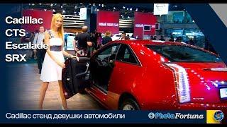 Работа в автосалоне для девушки в москве модельный бизнес баймак