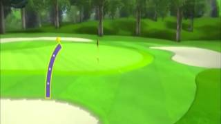 Wii Sports: Eagle, Albatross & Hole in One (WINNER) FAKE