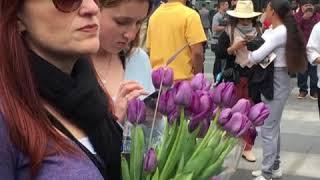 洛杉矶湖人队粉丝在斯台普斯中心外悼念科比