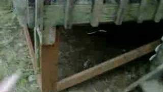 Lattice Frame Under Deck