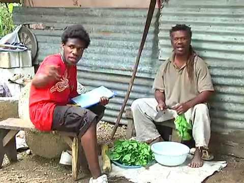 2009 Vanuatu national population and housing census