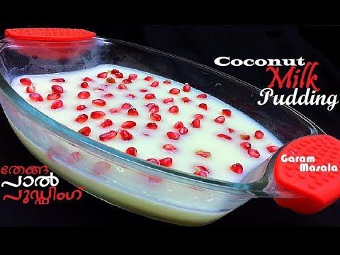 Easy Coconut Milk Pudding  തേങ്ങാപാൽ പുഡ്ഡിംഗ് Thenga Paal Pudding