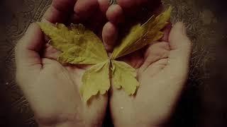 """""""Herbst"""" Gedicht von Rainer Maria Rilke, Musik & Bild: Linda Trillhaase"""
