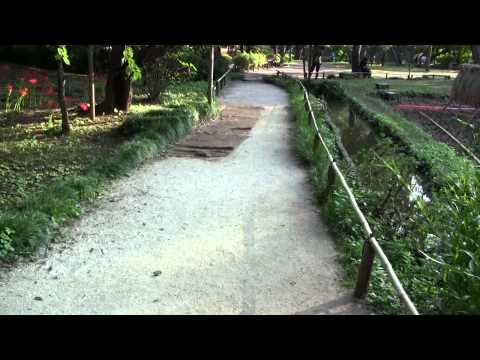小石川後楽園を歩く