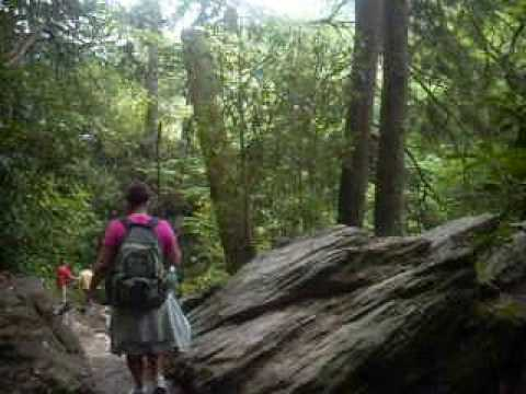A Smoky Mountain Hike