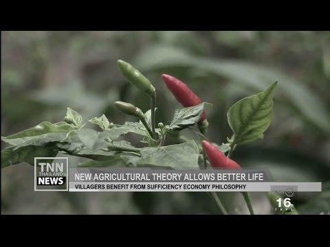 TNN THAILAND NEWS ข่าวภาคภาษาอังกฤษ (24/10/59)