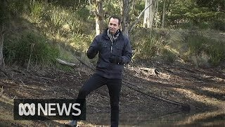 Severe drought dries up springs in Great Dividing Range