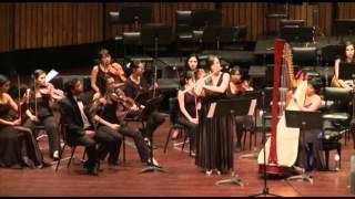 W. A Mozart - Concierto para flauta y arpa K.299 II.mov