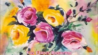 Vos Flores Rosarum