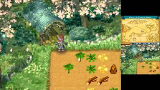 Let's Play Rune Factory 2: A Fantasy Harvest Moon - Episode 1