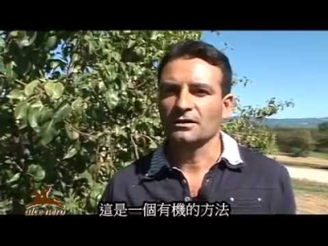 alce nero Fruit Producers