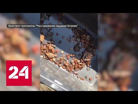 Как в Калининградской области борются с ловцами янтаря - Россия 24