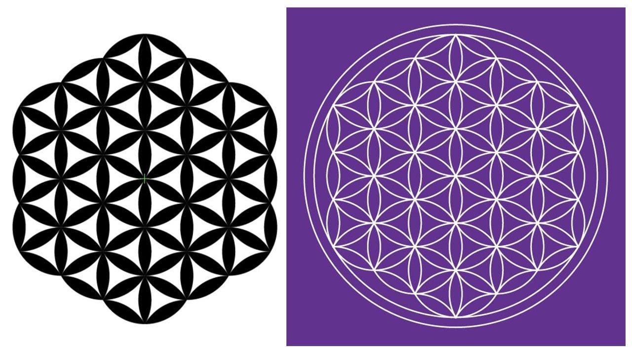 картинки символа цветок жизни принято спрашивать имя