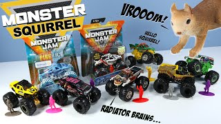 Monster Jam Trucks Grave Digger Zombie BroDozer Dragon & More! 2019 Spin Master Toys