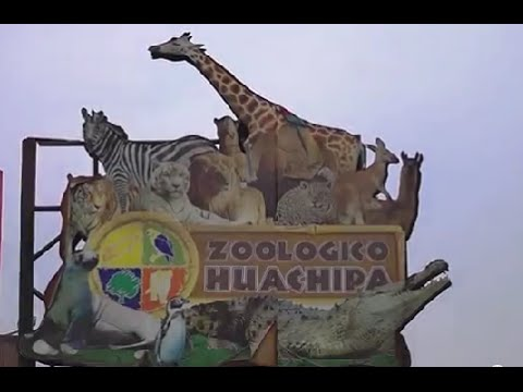 2do Sorteo De Entradas Al Zoologico De Huachipa By Derrama Magisterial El parque zoológico huachipa es una institución cultural y unidad de conservación de fauna y flora silvestre, que se localiza en el distrito de ate. huachipa by derrama magisterial