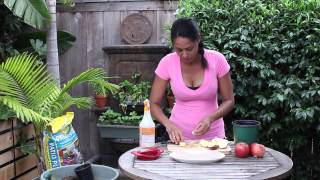 How to Plant Apple Seeds in a Pot : Garden Seed Starting