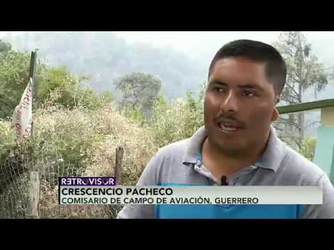 El pentágono de amapolas en la sierra alta de Guerrero