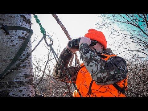 MN Deer Hunt 2017