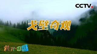 《地理·中国》 20201222 宝地桑田·戈壁奇观| CCTV科教 - YouTube