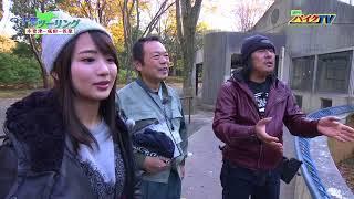 719「千葉ツーリング②アシスタント 平嶋夏海」】 HONDA NC750...