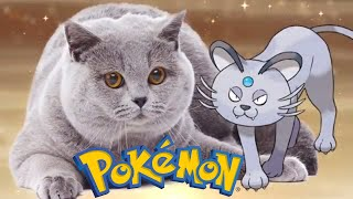 5 Pokemon Based On REAL Cat Species