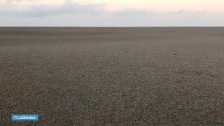 Bizarre beelden: Stille Oceaan kleurt grijsbruin door puimsteen uit vulkaan