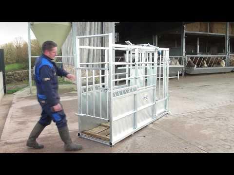 IAE Warrior Cattle Crush