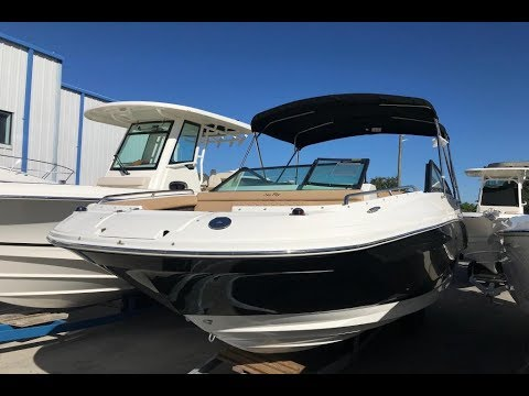 2019 Sea Ray 250 SDX Outboard For Sale at MarineMax Clearwater