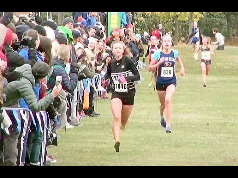 junior-girls-race-2017-bc-high-school-cross-country-championships