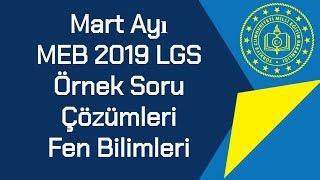 Mart Ayı / MEB 2019 LGS / Örnek Soruları Ve Çözümleri / Fen Bilimleri