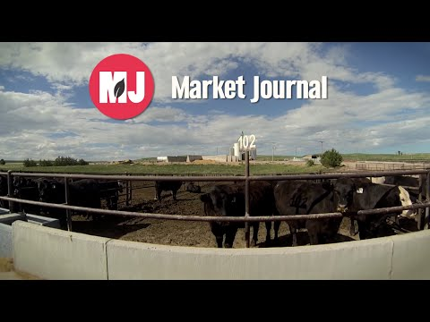 Market Journal - January 9, 2015 (full episode)
