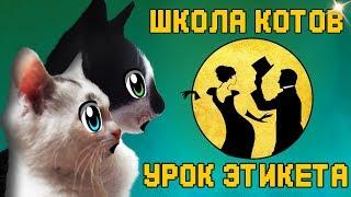 ШКОЛА КОТОВ УРОК ХОРОШИХ МАНЕР для Кошечки МУРКИ! Кот Малыш  и КОШАЧЬЯ СЕМЬЯ  НА СОБРАНИИ !
