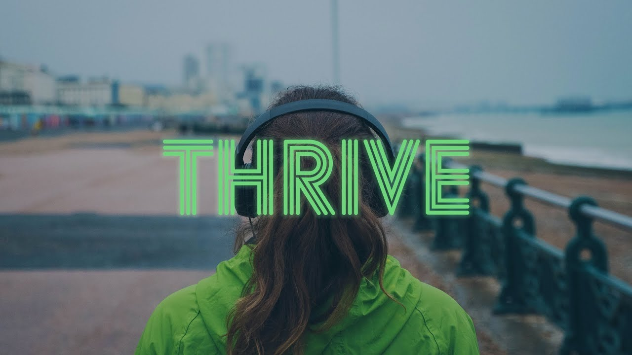 Thrive: Legacy Cover Image