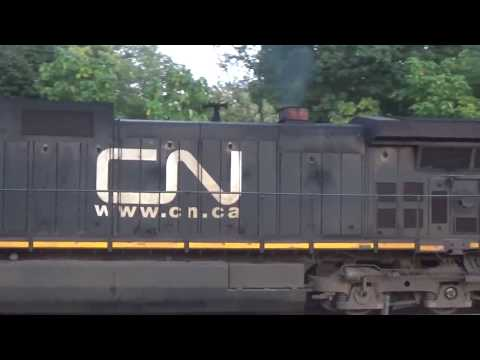 Canadian National Intermodal And Metra Electric Outbound Race Through Flossmoor, IL