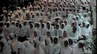Download Video Kitab Al - Hikam : Hikmah Ke - 22 (KH. Muhammad Bakhiet / Guru Bakhiet) MP3 3GP MP4