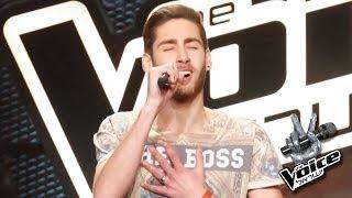ישראל 3 The Voice - ניב דמירל - בסוף מתרגלים להכל