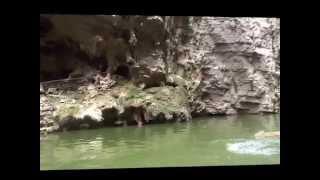 КРУИЗ ПО РЕКЕ ЯНЦЗЫ(Видео сделано во время круиза по реке Янцзы., 2015-02-28T20:36:57.000Z)
