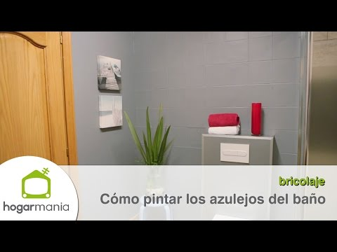 Pintura anti manchas doovi for Como limpiar las paredes del bano