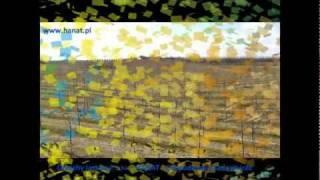 Orzechy laskowe producent  - HANAT - Gospodarstwo Sadownicze