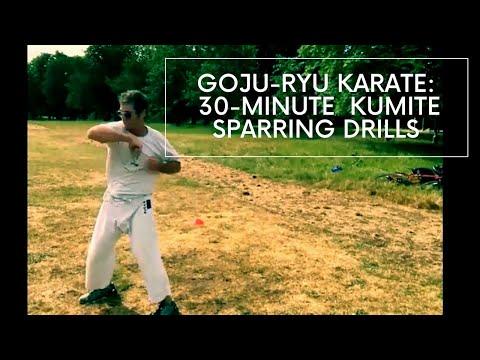 30-Minute GOJU-RYU Kumite Class (Follow Along) - Hanwell Karate Club